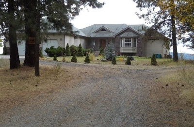 Nine Mile Falls Single Family Home For Sale: 6379 N Villier Rd