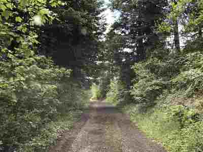 Bonner County, Kootenai County Single Family Home For Sale: 48323 S Highway 3 St