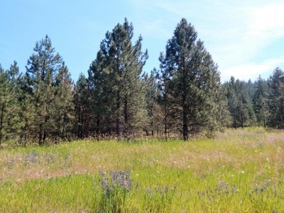 Fruitland Residential Lots & Land For Sale: Wolf Track #Lot 3