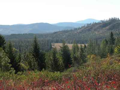 Newport Residential Lots & Land For Sale: NE Deer Valley