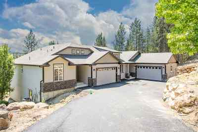 Spokane County, Stevens County Single Family Home For Sale: 420 E Little Spokane Connection Rd