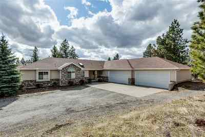 Spokane County, Stevens County Single Family Home For Sale: 19203 E Granite Ln