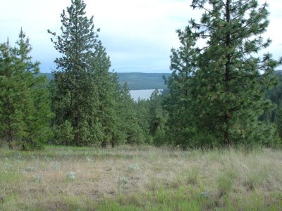Tumtum Residential Lots & Land For Sale: W Riverview