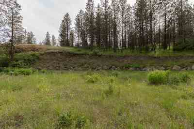 Nine Mile Falls Residential Lots & Land For Sale: Xx N Brooks Rd