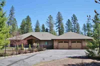 Single Family Home For Sale: 315 Palmer Ln