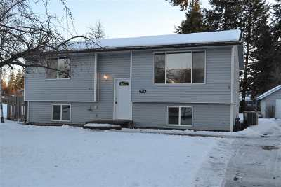 Single Family Home For Sale: 206 E 4th St