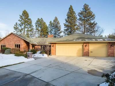 Spokane Single Family Home For Sale: 801 W Dover Ct