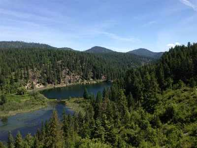 Bonner County, Pend Oreille County Residential Lots & Land For Sale: Chain Lakes #AB