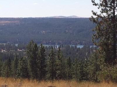 Nine Mile Falls Residential Lots & Land For Sale: Summerlin