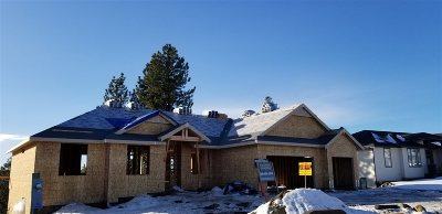 Spokane County, Stevens County Single Family Home New: 8011 N Meghan St
