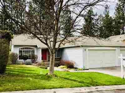 Spokane Single Family Home New: 4108 S Greystone Ln