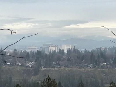 Spokane Residential Lots & Land For Sale: W 18th