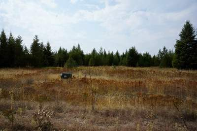 Chattaroy WA Residential Lots & Land For Sale: $232,900