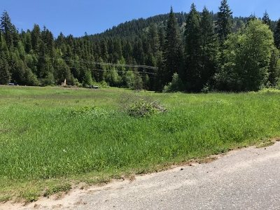 Ione Residential Lots & Land For Sale: N Sunset
