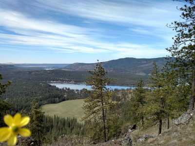Residential Lots & Land For Sale: Saddle Mountain #Lot 27