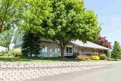 Single Family Home For Sale: 20616 N Day-Mt. Spokane Rd