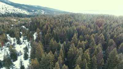 Cusick Residential Lots & Land For Sale: Plateau