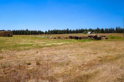 Deer Park Residential Lots & Land For Sale: 42702 N Sherman Rd