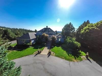 Spokane Single Family Home For Sale: 5714 E Jamieson Rd