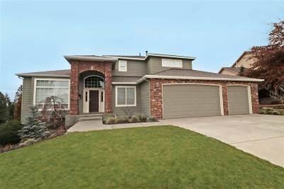 Veradale Single Family Home For Sale: 5115 S Bella Vista Dr
