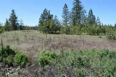 Nine Mile Falls Residential Lots & Land For Sale: 11211 N Dover Rd