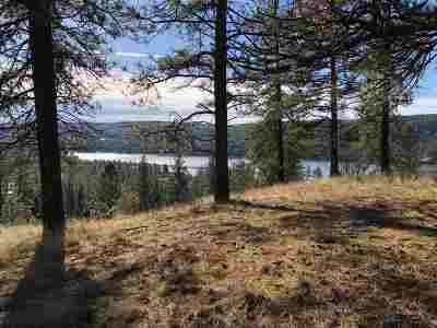 Nine Mile Falls Residential Lots & Land For Sale: Lakeview