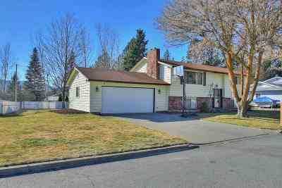 Spokane Valley Single Family Home Ctg-Inspection: 13218 E Tall Tree Rd