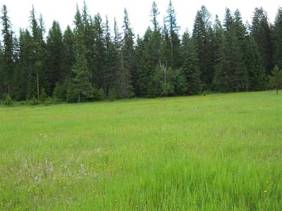 Cusick Residential Lots & Land For Sale: Kelly
