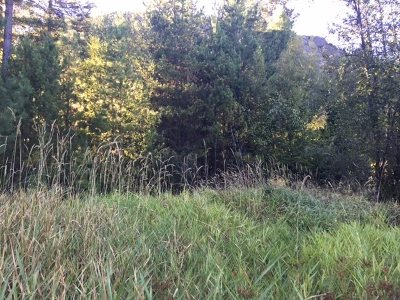 Newport Residential Lots & Land For Sale: Trask Pond