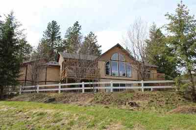 Spokane County, Stevens County Single Family Home For Sale: 15702 E Jackson Rd