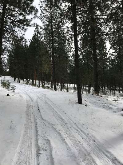 Spokane Residential Lots & Land For Sale: Xxx S Morrow Park Rd