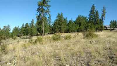Nine Mile Falls Residential Lots & Land For Sale: Stony