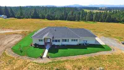 Spokane Single Family Home For Sale: 24411 N Carey Ln #Parcel #