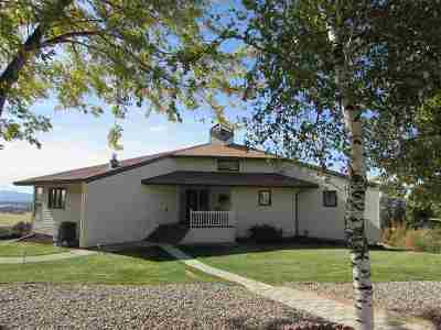 Spokane County, Stevens County Single Family Home For Sale: 16805 E Macmahan Rd