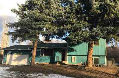 Spokane Single Family Home Ctg-Inspection: 508 E Shenandoah Dr