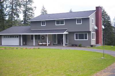 Spokane Single Family Home For Sale: 20204 N Day Mount Spokane Rd
