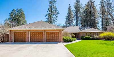 Single Family Home For Sale: 703 W Saxon Dr