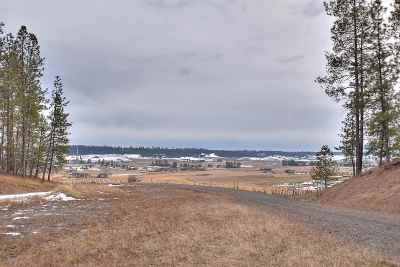 Mead Residential Lots & Land For Sale: Mt Spokane Park Dr