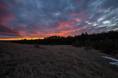 Spokane Valley Residential Lots & Land For Sale: S Chestnut