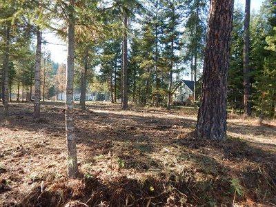 Chewelah Residential Lots & Land For Sale: Hogans