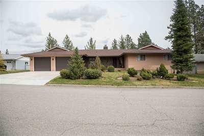 Spokane, Spokane Valley Single Family Home For Sale: 3719 S Ridgeview Dr