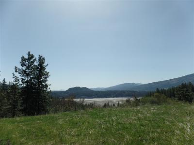 Kettle Falls Residential Lots & Land For Sale: Gold Edge Mine