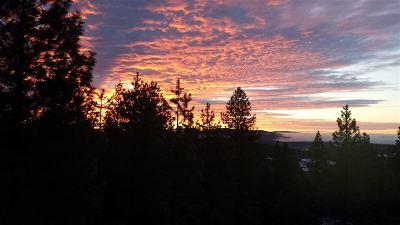 Nine Mile Falls Residential Lots & Land For Sale: Blueridge #LOT #33