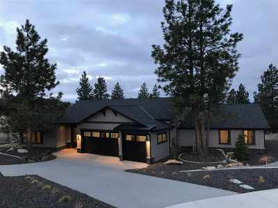 Liberty LK Single Family Home For Sale: 780 N Holiday Hills Dr