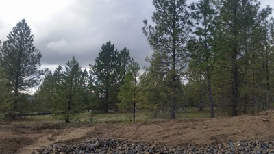 Residential Lots & Land For Sale: 60847 Westview Dr
