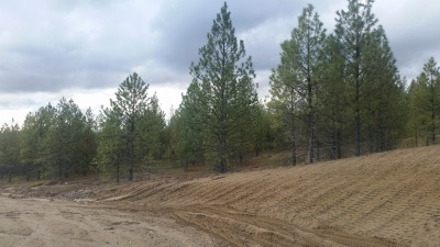 Nine Mile Falls Residential Lots & Land For Sale: 60855 Westview Dr