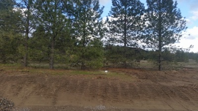 Residential Lots & Land For Sale: Lot 21 Westview Dr
