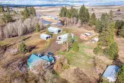 Single Family Home For Sale: 32026 Bald Ridge Rd