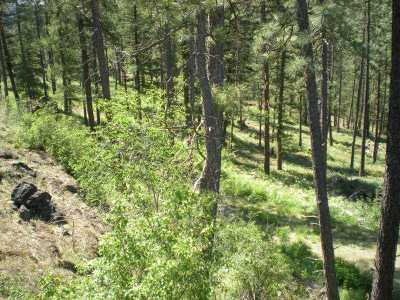 Addy Residential Lots & Land For Sale: Marble Valley Basin #B