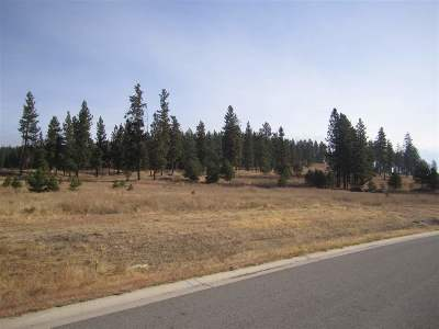 Otis Orchards Residential Lots & Land For Sale: 20929 E Happy Trails Ln